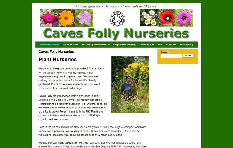 Caves-Folly