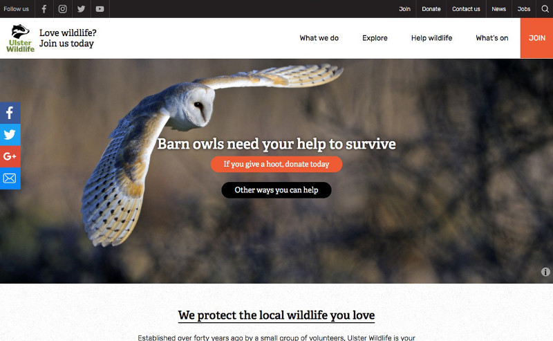 Ulster-Wildlife